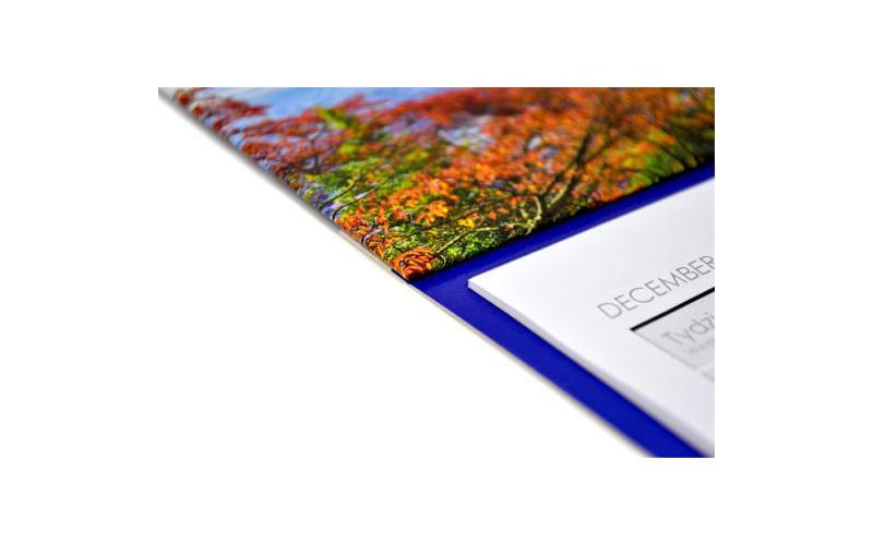 Trójdzielny 308 x 790 mm główka wypukła - międzynarodowy